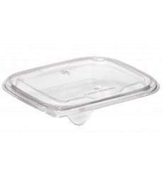 Tampa Plana de Plastico para Saladeira PET 12x12cm (50 Uds)