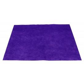 Toalhete Não Tecido Lilás 30x40cm 50g (500 Uds)