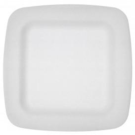 Prato Isopor Branco 170 mm (50 Uds)