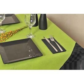 Toalha em Rolo Não Tecido Pistache 1,2x50m 50g (1 Ud)