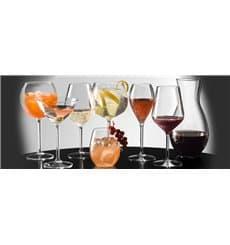 Copo Flute Reutilizáveis Vinho Transp. TT 225ml (6 Uds)