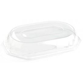 Tampa Plastico Trasparente Bandeja 46x30x7 cm (5 Uds)