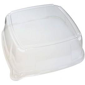 Tampa Plastico Trasparente Bandeja 35x35x9 (5 Uds)