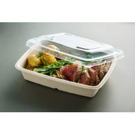 Tampa Plastico PP para Embalagem 230x165mm (50 Uds)