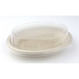 Tampa Cupula Plástico PP para Bandeja 240x170mm (50 Uds)
