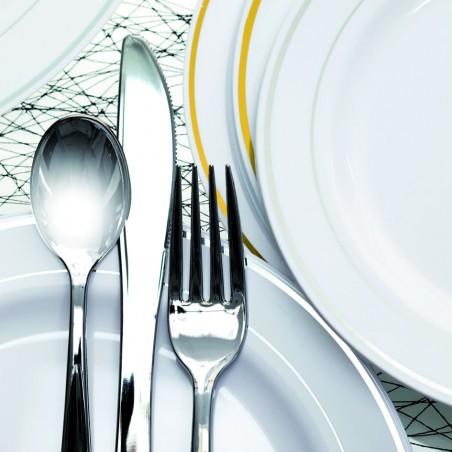 Colher de Plastico Metalizado 17,5 cm (10 Unidades)
