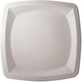 Prato Quadrado Cana-de-açúcar Branco 25cm (500 Uds)