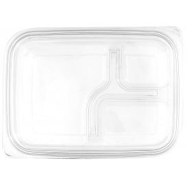 Tampa Plana de Plastico para Embalagem PET 22x16cm (75 Uds)