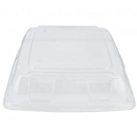 Tampa Plástico PET Transparente Bandeja 31x31cm (5 Uds)