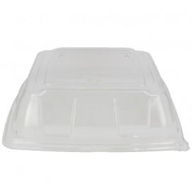 Tampa Plástico PET Transparente Bandeja 27x27cm (5 Uds)