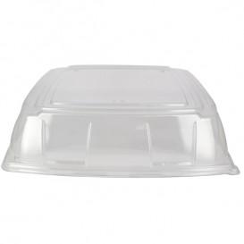 Tampa Plástico PET Transparente Bandeja 40x40cm (5 Uds)