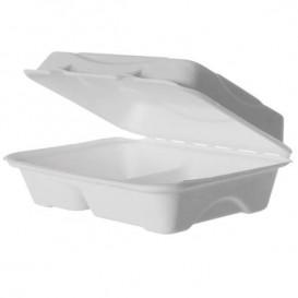 Embalagem Cana-de-açúcar Branco 2C 23x15x7,5cm (50 Uds)