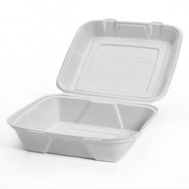 Embalagem Cana-de-açúcar Branco 24x23x7,7cm (50 Uds)