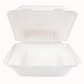 Embalagem Cana-de-açúcar com PLA Branco 20x20x7,5cm (50 Uds)
