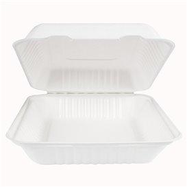 Embalagem Cana-de-açúcar com PLA Branco 23x23x7,5cm (50 Uds)