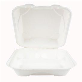 Embalagem Cana-de-açúcar Branco 3C 23x23x7,5cm (50 Uds)