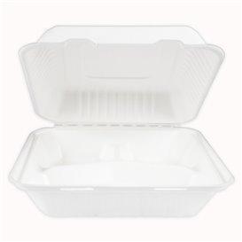 Embalagem Cana-de-açúcar com PLA Branco 3C 23x23x7,5cm (50 Uds)