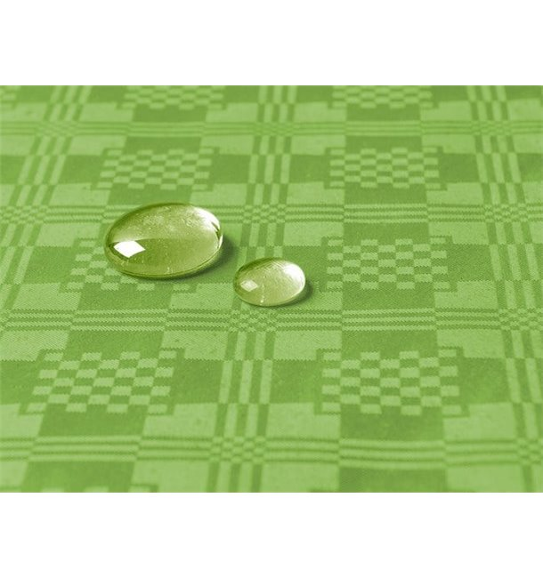 Toalha Papel Plastificado Rolo Verde 1,2x5m (1 Ud)
